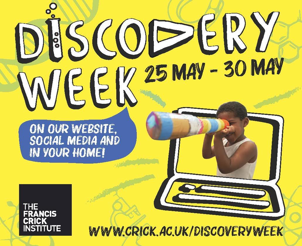 Discovery Week Branding 92x80 (00000003)